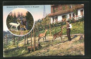 AK Burgdorf, Wildpark-Hotel Pension Rothöhe, Jäger mit Wild