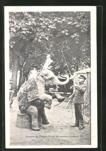 AK Théatre-Cirque des animaux exotiques, Dompteur und Zirkus-Elefant