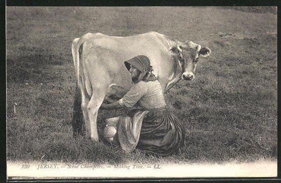 AK Jersey, Scene Champetre, Milking time