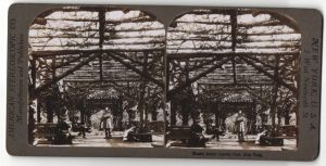 Stereo-Fotografie American Stereoscopic Co., Ansicht New York City, Central Park