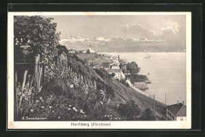 AK Herrliberg, Teilansicht von Anhöhe mit Weinstock auf Zürichsee und Gebirge