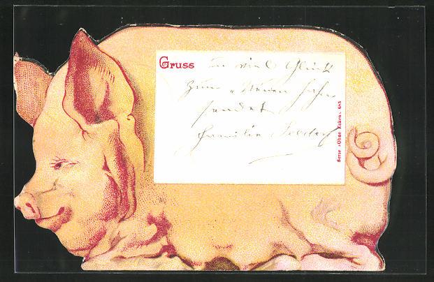 AK Postkarte in Form eines fetten Schweines