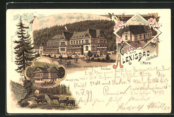 Lithographie Alexisbad i. Selkethal, Hôtel Försterling, Herzogl. Villa, Badehaus