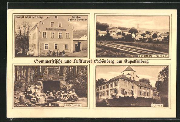 AK Schönberg am Kapellenberg, Ortsansicht, Schloss, Elsterquelle, Gasthof Kapellenberg