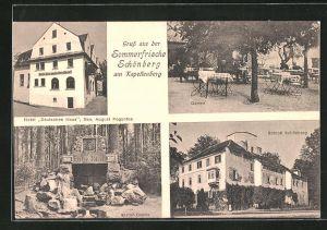 AK Schönberg am Kapellenberg, Hotel Deutsches Haus, Garten, Schloss Schönberg, Elster-Quelle