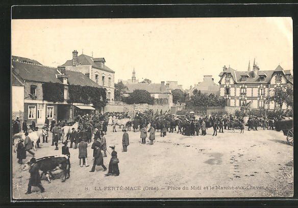 AK La Ferte-Mace, Place du Midi et le Marche-aux Chevaux