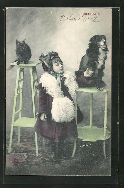 AK Mädchen versucht sich an der Hunde- und Katzen-Dressur