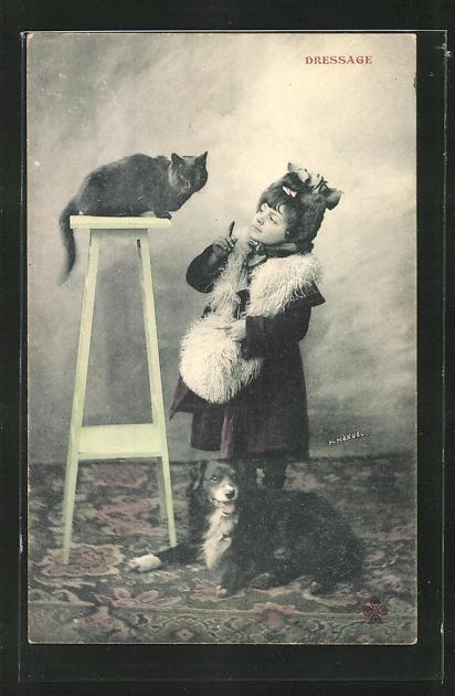 AK Mädchen versucht sich an der Katzen-Dressur