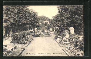 AK Asnières, Cimetière des Chiens, Allée Principale, Gräber auf einem Hunde-Friedhof