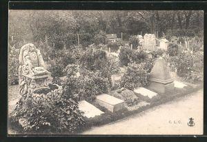 AK Hunde-Friedhof, Blick auf die Grabsteine