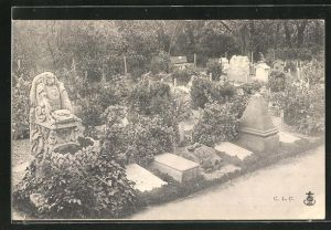 AK Hunde-Friedhof, Blick auf die Grabstätten