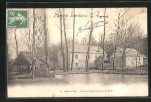 AK Bonneval, Vue du Loir et Moulin du Pont