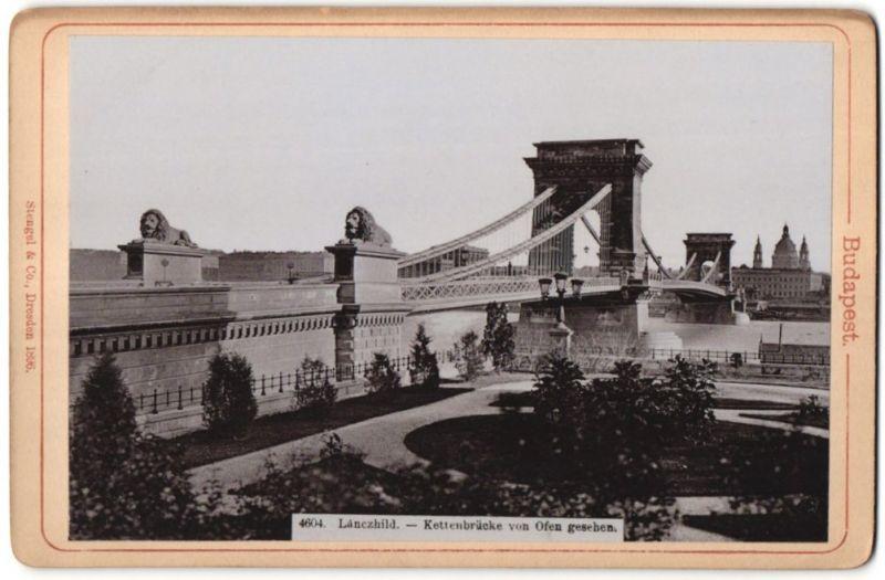Fotografie Stengel & Co., Dresden, Ansicht Budapest, Kettenbrücke von Ofen gesehen 0