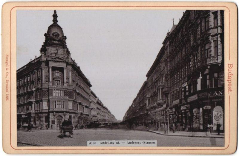 Fotografie Stengel & Co., Dresden, Ansicht Budapest, Andrassy-Strasse