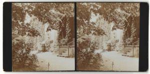 Stereo-Fotografie Fotograf unbekannt, Ansicht Berlin-Zehlendorf, Klostergarten am Schlachtensee, Nonne