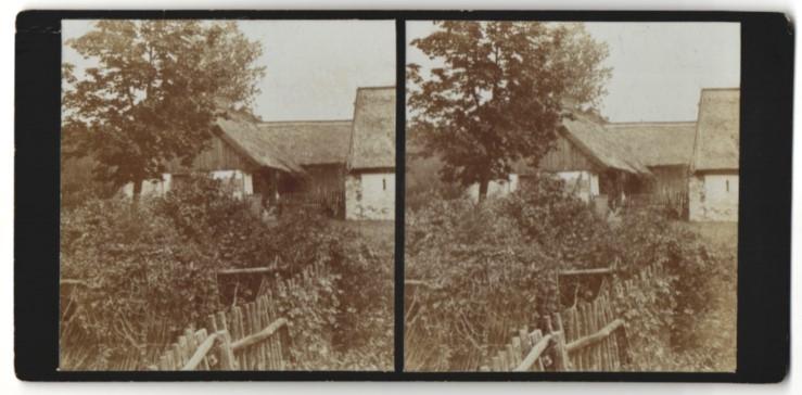 Stereo-Fotografie Fotograf unbekannt, Ansicht Wilhelmsaue / Spree, Bauerngehöft im Ort