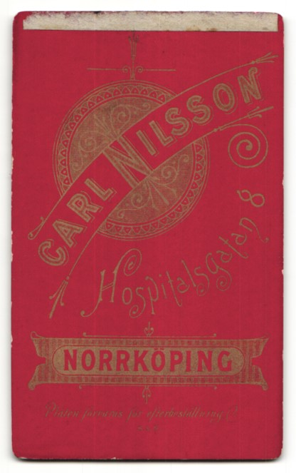 Fotografie Carl Nilsson, Norrköping, Portrait Frau im Samtkleid mit Puffärmeln 1