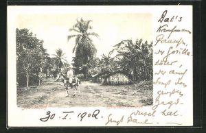 AK Jaunedorf / Kamerun, Hinterland, Ortspartiemit Pferd und Reiter