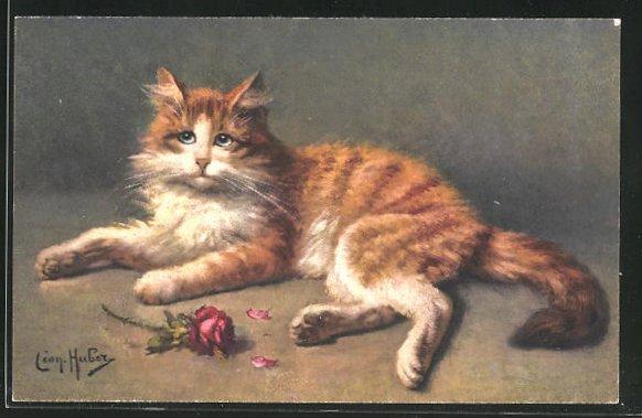 Künstler-AK Ruhende rot-weisse Katze und rote Rose