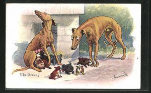 Künstler-AK Fritz Quidenus: Ehe Irrung, Windhundpaar mit Terrierwelpen