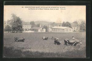AK Buzenval, Institution Saint-Nicolas, La Prairie et le Mont Valerien dans le fond