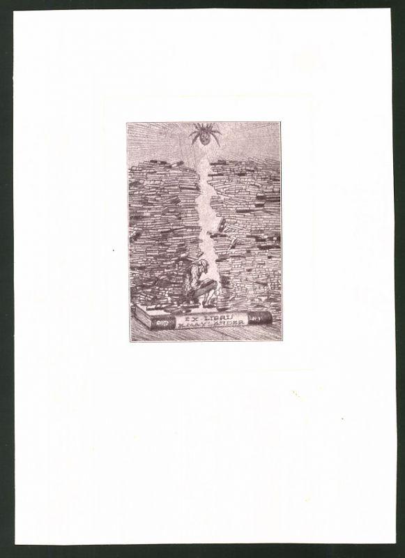 Exlibris K. Mayländer, Mann zwischen Bücherstapeln beim Lesen, Spinne spinnt ein Netz
