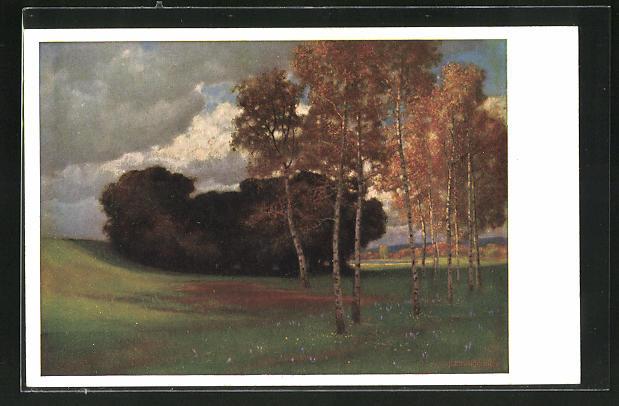 Künstler-AK Hermann Rüdisühli: Birken im Moor