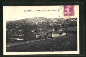 AK Belmont de la Loire, Vue generale