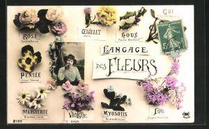 AK Blumensprache, Langage des Fleurs, Rose Tendre Amour, Houx Porte Bonheur