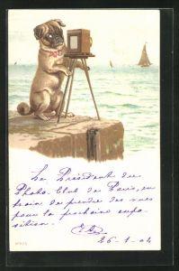 AK Fotoapparat, Hund fotografiert das Meer