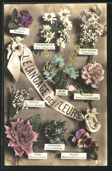 AK Langage des Fleurs: Muguet Retour du Bonheur, Blumensprache