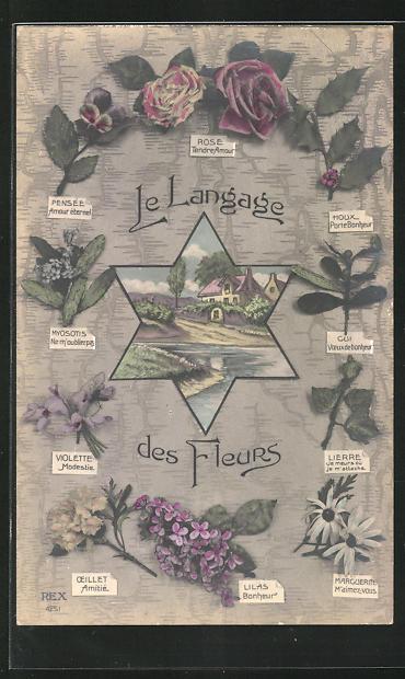 AK Le Langage des Fleurs: Violette Modestie, Blumensprache 0