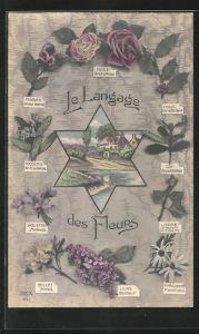 AK Le Langage des Fleurs: Violette Modestie, Blumensprache
