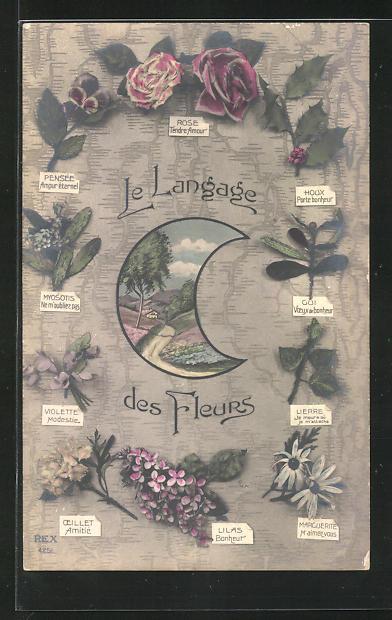 AK Le Langage des Fleurs: Houx Parte bonheur, Blumensprache 0