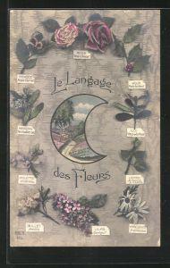AK Le Langage des Fleurs: Houx Parte bonheur, Blumensprache