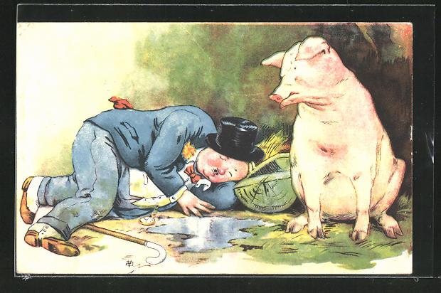AK Betrunkener schläft neben Schwein