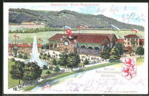 Lithographie Zürich, Kantonal-Schützenfest 1902, Festgelände