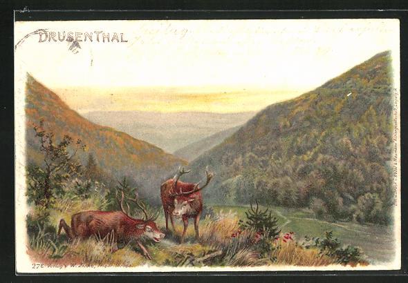 Lithographie Hirsche über dem Drusenthal