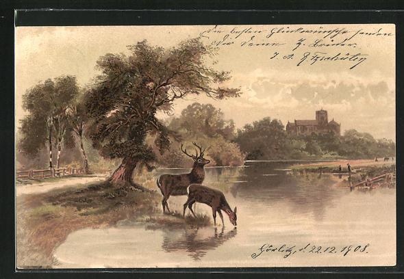 Lithographie Hirsch und Hirschkuh am Wasser