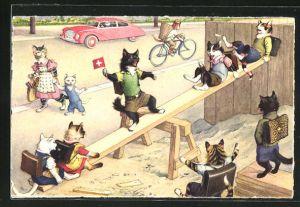Künstler-AK Katzen spielen auf einer Wippe
