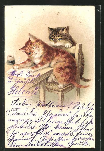 Lithographie Katze schreibt einen Brief