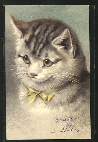 Präge-AK Süsse getigerte Katze mit gelber Schleife um den Hals