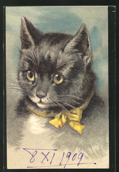 Präge-AK Niedliche getigerte Katze mit gelber Schleife um den Hals