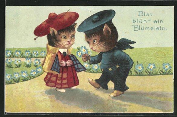 Präge-AK Blau blüht en Blümelein, Katzen-Kavalier mit Blumen für die Liebste
