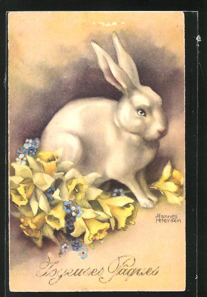 Künstler-AK Hannes Petersen: Weisses Kaninchen zwischen gelben Narzissen