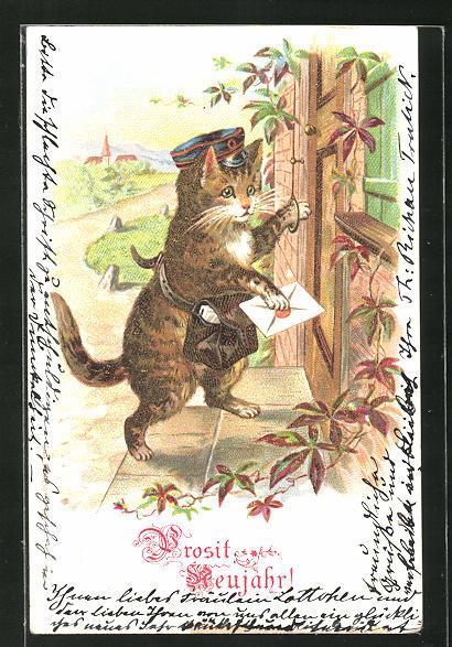 Lithographie Katze als Briefträger