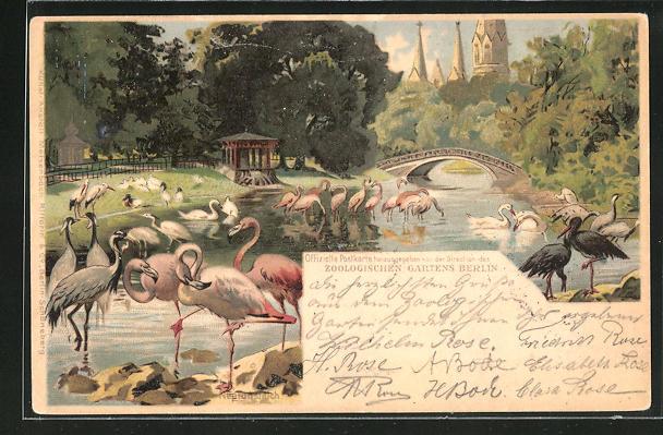 Lithographie Berlin, Zoologischer Garten mit Flamingos und Kaiser Wilhelm Gedächtniskirche