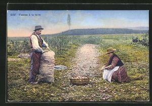 AK Fideles a la terre, Bauernpaar auf dem Kartoffelfeld