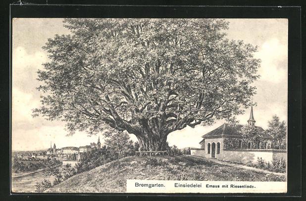 AK Bremgarten, Einsiedelei, Emaus mit Riesenlinde