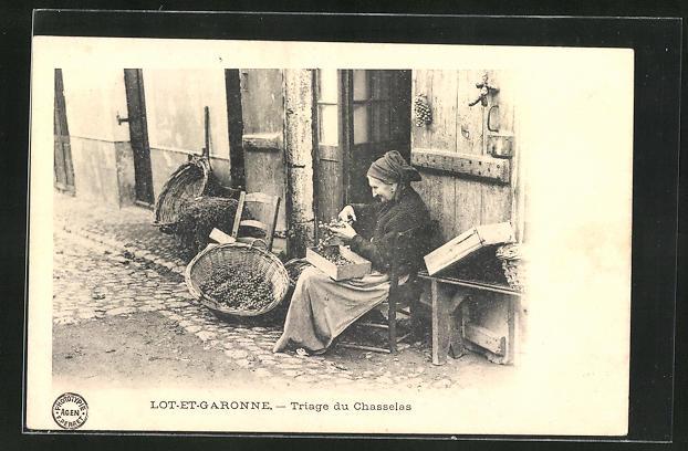 AK Lot-et-Garonne, Triage du Chasselas, Greisin mit Weintrauben